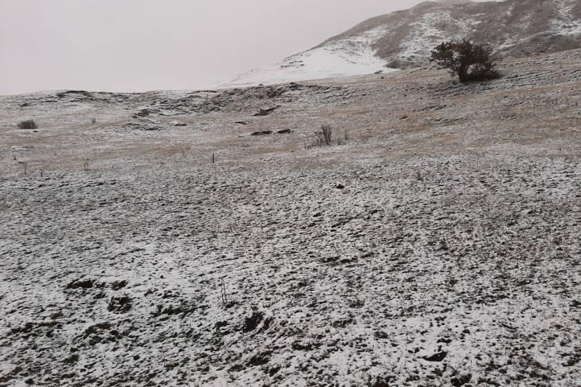 Nieve en Tafí del Valle: mirá las fotos