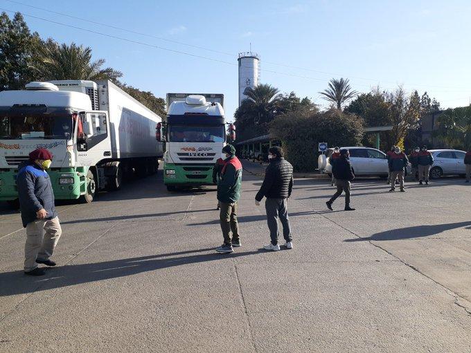 """"""" Coronavirus en Tucuman """": En Alderetes un trabajador de  La Sevillanita dio positivo y  hay paro"""