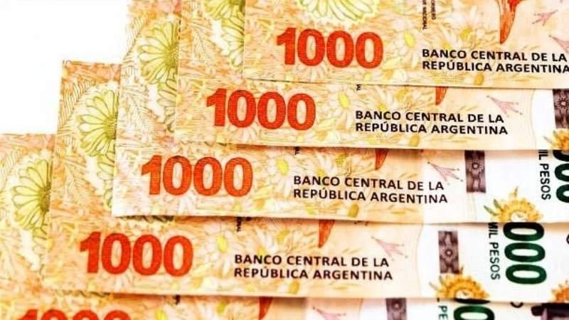 Una Diputada Nacional acusó al Gobierno de Manzur de otorgar planes sociales de $ 5.000.- con fines electorales