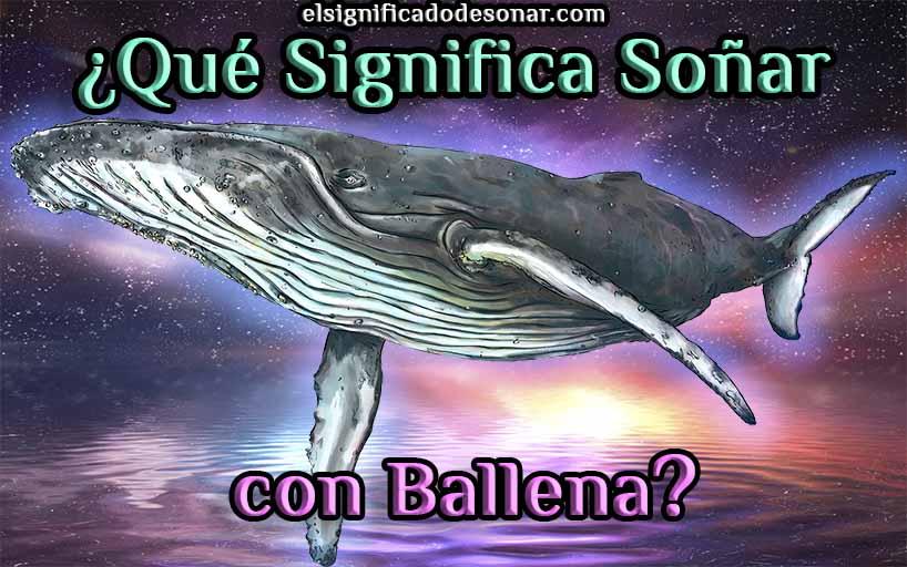 Qué Significa Soñar con Ballena?
