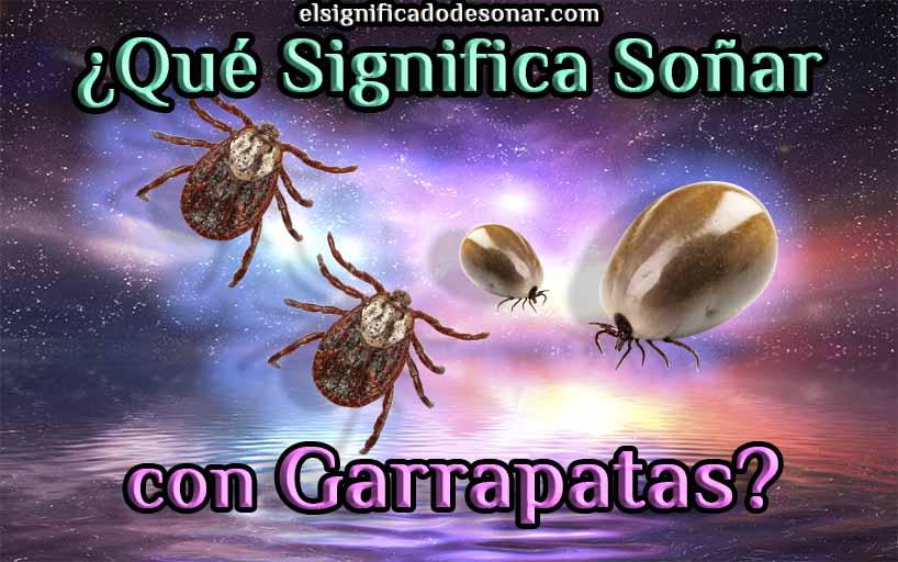 Qué Significa Soñar con Garrapatas?