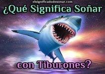 Qué Significa Soñar con Tiburones?