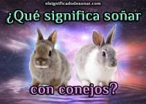 ¿Qué significa soñar con conejos?