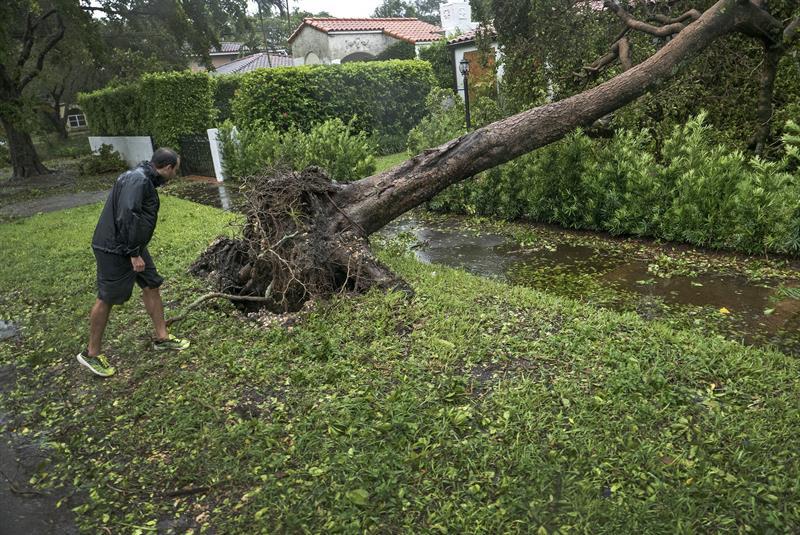 Así quedaron los paraísos caribeños, destruidos por 'Irma — Fotos