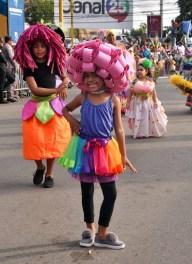 Fotos Tercer domingo Carnaval de Santiago 2018