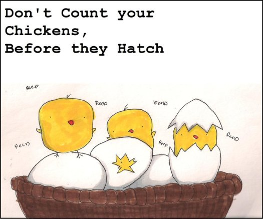 don__t_count_your_chickens_by_quincyfangirl-d38flef