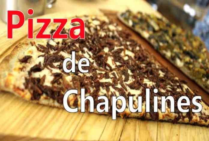 Los chapulines, un gran platillo de la gastronomía mexicana / ElSouvenir