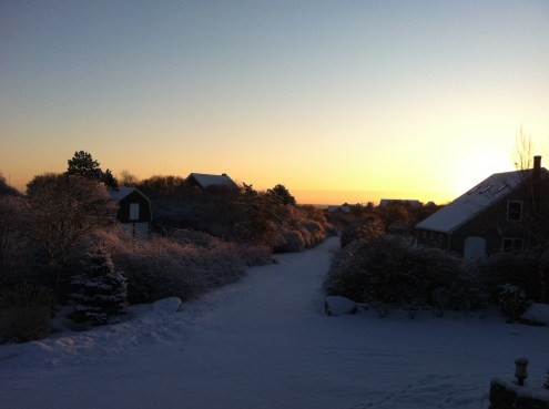 Sunrise - while I let Finlay out and feed him