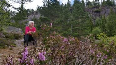Rest by lake Vihus