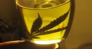 cannabis aceite 01