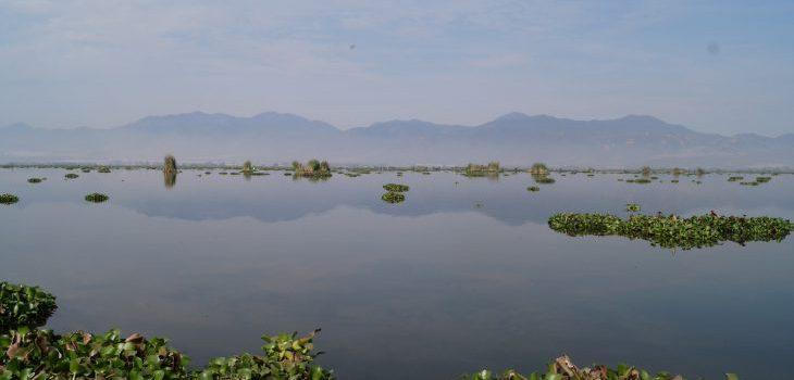 Monitoreará UdeG lago de Zapotlán