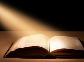 Los libros y la luz