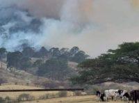 Tras 4 días, declaran controlado incendio en Los Mazos