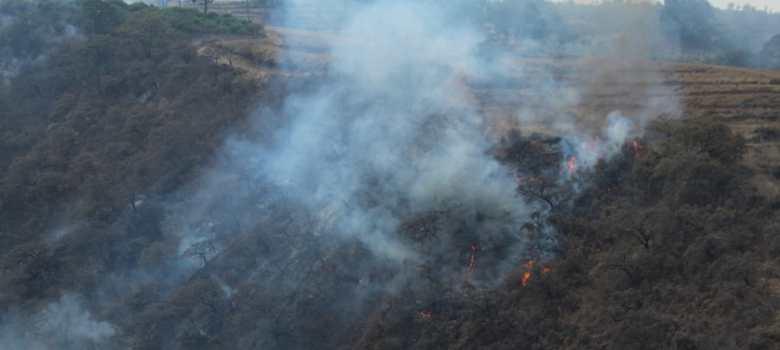 Más de 12 mil hectáreas fueron alcanzadas por incendios en el sur de Jalisco