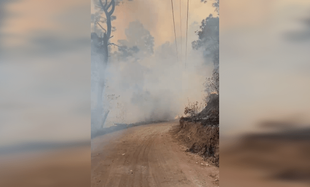 Gobierno de Mazamitla llama a denunciar para dar con responsables de incendio en Cerro del Tigre