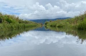 Imagen tomada de Vive El Sur