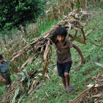 Vida y trabajo en Madanpur, Nepal