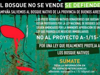 leycontra_bosques
