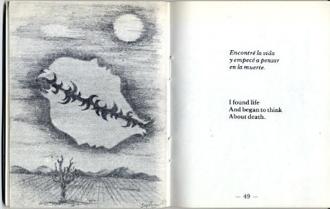 pagina-48-sd