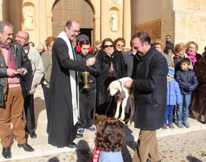«San Antón y San Sebastián» abren el Carnaval de El Toboso