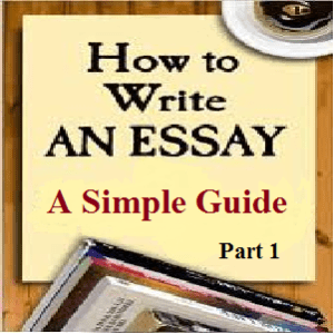 Basic essay writing example of an argument essay