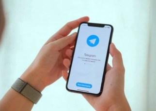 El Boom de la migración a Telegram