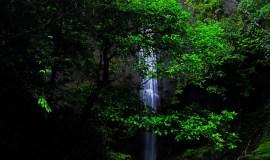Visita Cascada de la Sierpe - Ladrilleros