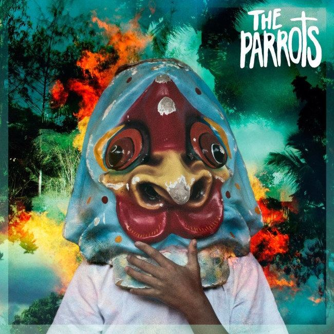 The Parrots – Aden Arabie