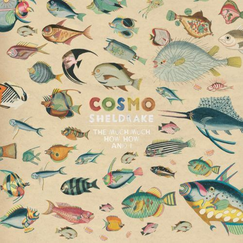 The Much Much How How and I, el Big Bang de Cosmo Sheldrake