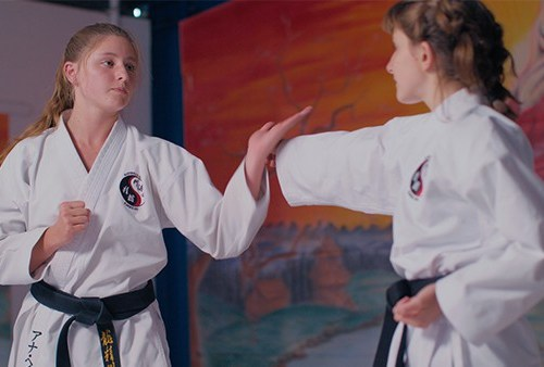 Hunter Valley Martial Arts Anna example image