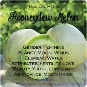 Honeydew Melon Magical Meaning | Honeydew Melon Magical Properties | Magical Herbs - Elune Blue