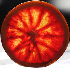 Blood oranges carry the magical property of being able to strengthen lust and passion, inspire creativity and imagination, while also being able to instill courage and strength. -- Blood Orange Magical Properties and Uses