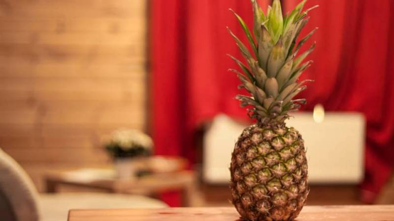 """Pineapples are symbolic of hospitality and warmth.  They express the sentiments of """"welcome,"""" and have been used traditionally to decorate door knockers, quilts, and other objects that let a friend or guest feel well-received.  This tradition gets its roots from the Eastern Seaboard and Southern areas of the United States. -- Meaning of Pineapple"""
