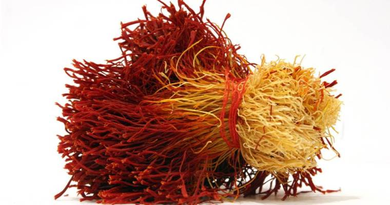The Flower of Health: The Magical Benefits of Saffron: Herbal Medicine & Remedies
