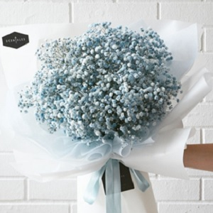A bouquet of blue baby's breath flowers.