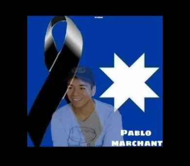 Pablo Marchant 2 AAVB-cord2