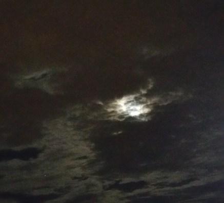 Stugeon Moon