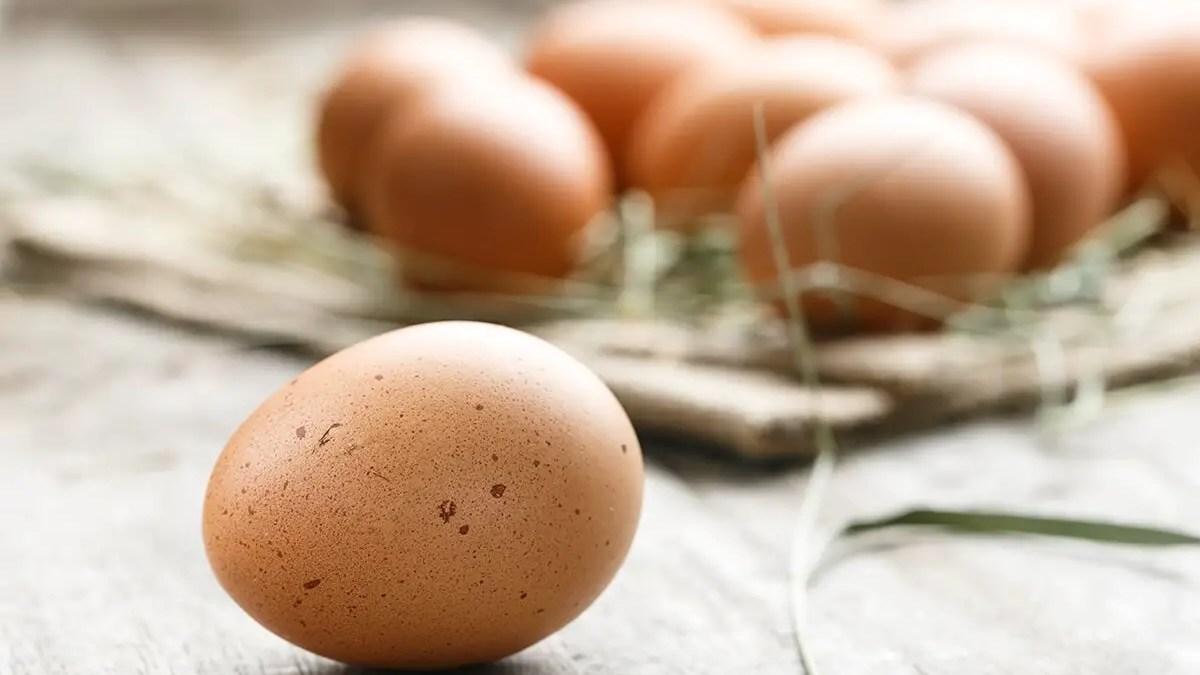 Alergia al Huevo: Causas, Síntomas y Tratamiento