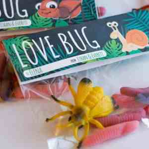 Free Printable Love Bug Treat Topper from Elva M Design Studio