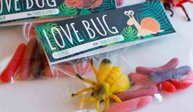 "Valentine's Day ""Love Bug"" Treat Topper"