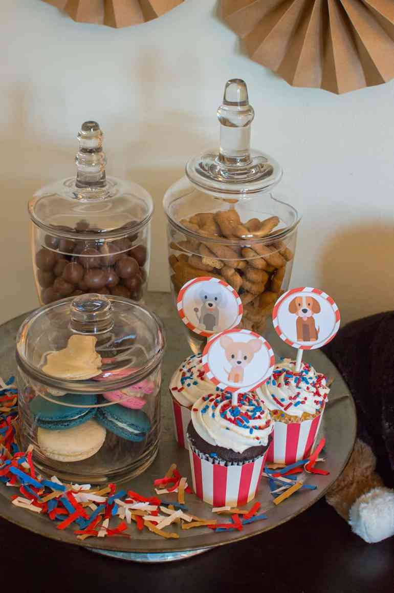 Puppy Party Treats on the Barkery Table