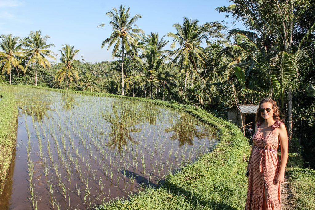 Bali con conductor - Día 1-2