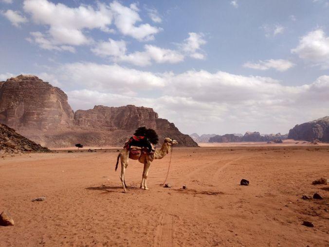 Viaje a Jordania - El Viaje No Termina