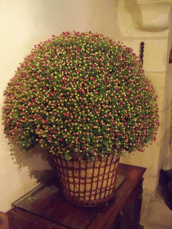 Centro_flores_Chenonceau