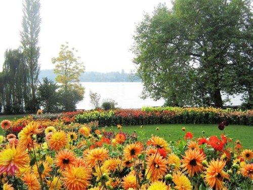Mainau: la isla de las flores en Alemania