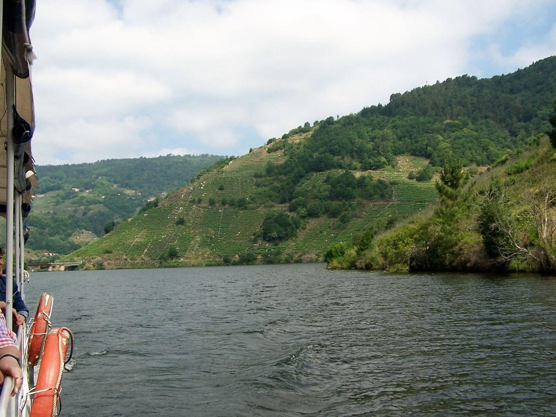 Surcando el río