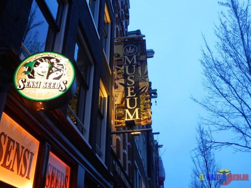 Museo de Cannabis Amsterdam