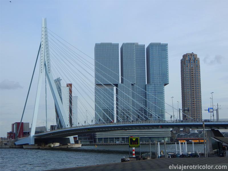 Puente de Erasmo en Rotterdam
