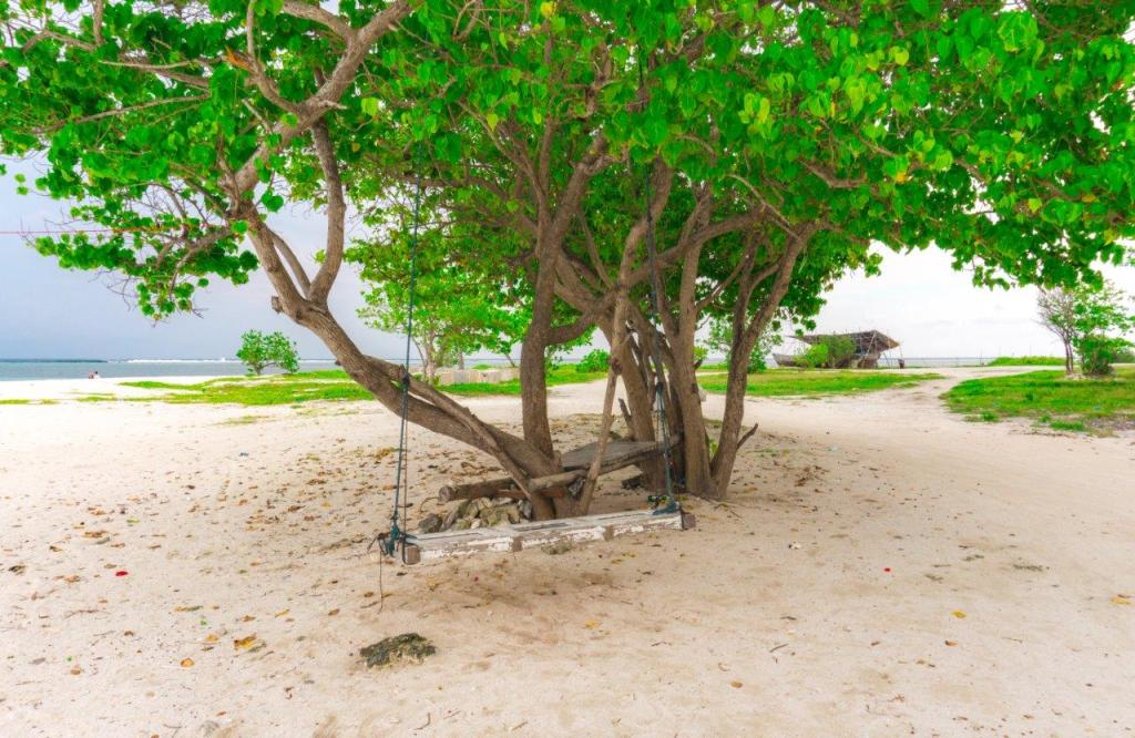 maafushi activities places to visit in maafushi