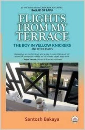 flights from my terrace book review